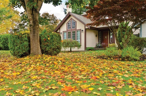 Real Home Advice Your Home Magazine Is Fall The Best